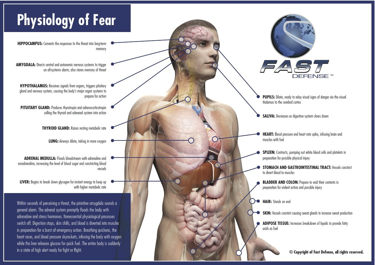 Why FAST Works – FAST Defense Global, Inc